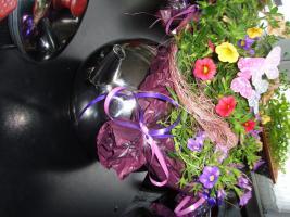 Foto 7 Edelstahl Teekanne Teekocher Teekessel, Wasserkessel als Blumentopf Übertopf