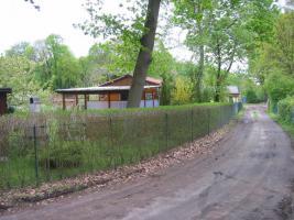 Foto 21 Eigentumsland - Erholungsgrundstück in Caputh ( bei Werder)