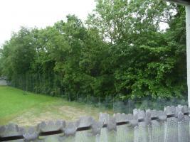 Foto 5 Eigentumswohnung im Kurort Bad Hall/OÖ zu verkaufen
