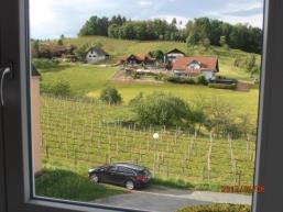 Foto 2 Eigentumswohnung in sonniger Südhanglage umgeben von Schilcherweinreben