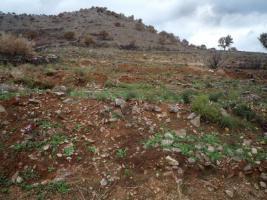 Ein großes Grundstück bietet zahlreiche Optionen/Griechenland