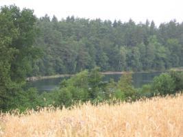 Foto 2 Ein wunderschönes Seegrundstück