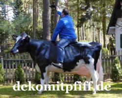 Eine Deko Kuh … und welches Modell … Holstein Deko Kuh oder … www.holsteinkuh.de … www.dekokuh.de …. www.liesel-von-der-alm.de …. www.dekomitpfiff.de