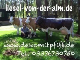 Foto 3 Eine Deko Kuh … und welches Modell … Holstein Deko Kuh oder … www.holsteinkuh.de … www.dekokuh.de …. www.liesel-von-der-alm.de …. www.dekomitpfiff.de