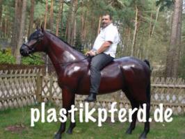 Foto 6 Eine Deko Kuh … und welches Modell … Holstein Deko Kuh oder … www.holsteinkuh.de … www.dekokuh.de …. www.liesel-von-der-alm.de …. www.dekomitpfiff.de