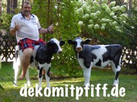 Foto 2 Eine Deko Kuh zum aufsitzen bis 100kg tragkraft und ein Deko Kalb zum aufsitzen bis 100kg Tragkraft ...