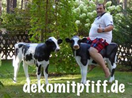 Foto 3 Eine Deko Kuh zum aufsitzen bis 100kg tragkraft und ein Deko Kalb zum aufsitzen bis 100kg Tragkraft ...