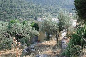 Foto 3 Einfaches Einfamilienhaus auf Egina/Griechenland