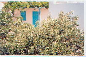 Einfaches Steinhaus auf Ios/Griechenland
