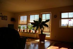 Foto 4 Einfamilienhaus am See