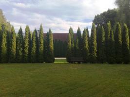 Foto 3 Einfamilienhaus und Wassermühle in Ungarn, Veszprém