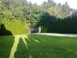 Foto 25 Einfamilienhaus und Wassermühle in Ungarn, Veszprém