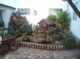 Foto 4 Einfamilienhaus mit kleiner Einliegerwohnung