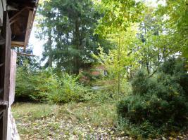 Foto 8 Einzigartiges, uneinsehbares Gartengrundstück