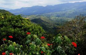Foto 19 Entdecke Kolumbien - ''Das einzige Risikio ist, dass Du bleiben willst''