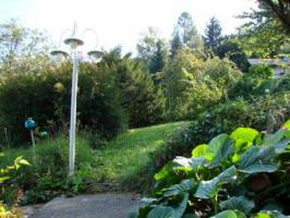 Foto 6 Entzückender Sommerbungalow auf Baugrund