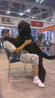 Foto 2 Erste Wahl Russischer Schwarzer Terrier Welpen zu verkaufen