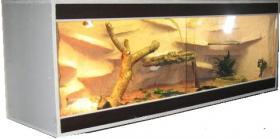 Exclusives Luxus Wüstenterrarium hochwertiges Komplettset. Neu!