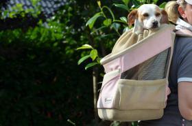 Hunde-Rucksack für Hunde bis 10kg