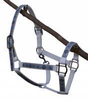 Farbenfrohe Pferdehalfter in Nylon und Leder