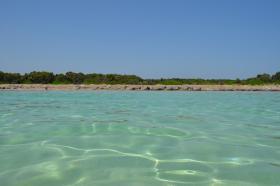 Foto 10 FeWo mit Meeresblick Insel Vir für 4 Personen Hunde willkommen