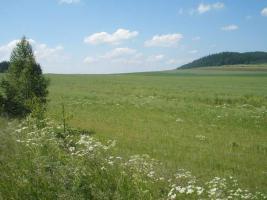 Foto 2 Feld in Tschechien