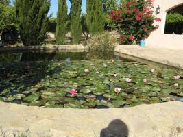 Foto 10 Ferien auf der Finca Casa-Nana Mallorca