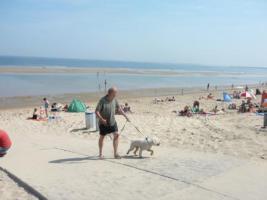 Foto 2 Ferienhaus in Beachpark Renesse, Urlaub mit Hund