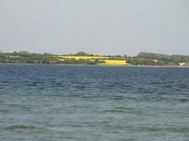 Foto 16 Ferienhaus Ostseeurlaub/Außenförde Ferienhaus Nr. 13- ***  ca.150 m bis zum Strand