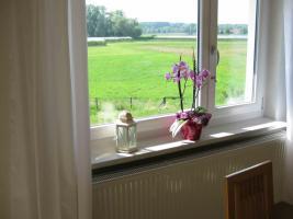 Foto 5 Ferienhaus Pusteblume Bodensee