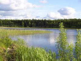 Foto 13 Ferienhaus mit Sauna, Boot und Angelrecht in Süd- Schweden von privat.