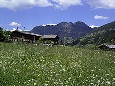 Foto 2 Ferienhaus/Wohnung Lärche
