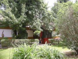 Foto 3 Ferienhaus mit Womostellplätzen auf 6320qm in Top Lage