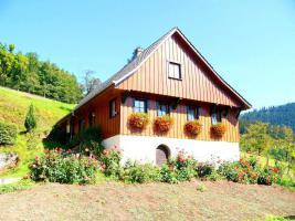 Foto 2 Ferienhaus - Schwarzwald - Ferienwohnungen
