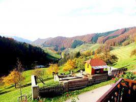 Foto 5 Ferienhaus - Schwarzwald - Ferienwohnungen