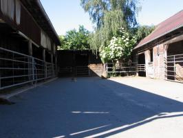 Foto 3 Ferienimmobilie und Pferdehof Altmark mit 14 ha Land