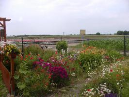Foto 14 Ferienwohnung Gledern, Niederrhein Grenze NL