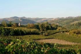 Foto 8 Ferienwohnung Italien Villa I Due Padroni