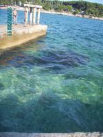 Foto 18 Ferienwohnung Kroatien/Istrien/Pula 4-Zimmer-Appartement  VERUDA