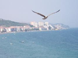 Ferienwohnung direkt am Strand in Cinarcik/ Istanbul, Türkei