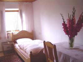 Foto 6 Ferienwohnung, Apartment  für Monteure Burghausen, Burgkirchen