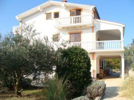 Ferienwohnungen auf der Insel Vir bis zu 10 Personen in Dalmatien bei Zadar