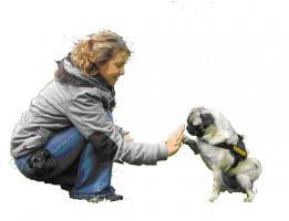 Festival Pfote & Hand f�r Graue Schnauzen, handicap dogs und Hundefreunde mit Behinderung