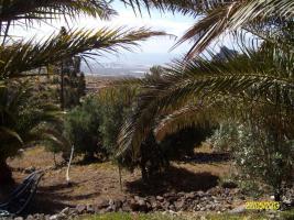 Foto 7 Finca auf Gran Canaria