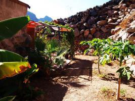 Foto 12 Finca Gran Canaria zu verkaufen - Barranco de Ayagaures