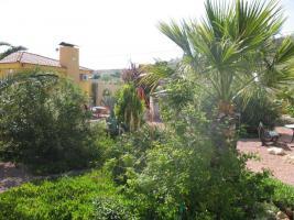 Foto 3 Finca mit grosser Parcelle in Alicante - Einfamilienhaus - Ferienhaus