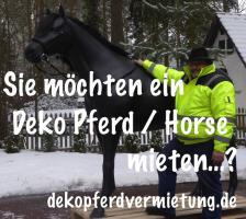 Firmenevent geplant und kein Deko Pferd … oh ja dann miete Dir eins ...