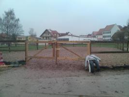 Foto 4 Freie Pferdeboxen