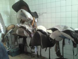 Foto 5 Freie Pferdeboxen