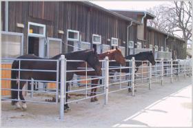 Foto 2 Freie Pferdeboxen in 70806 Kornwestheim